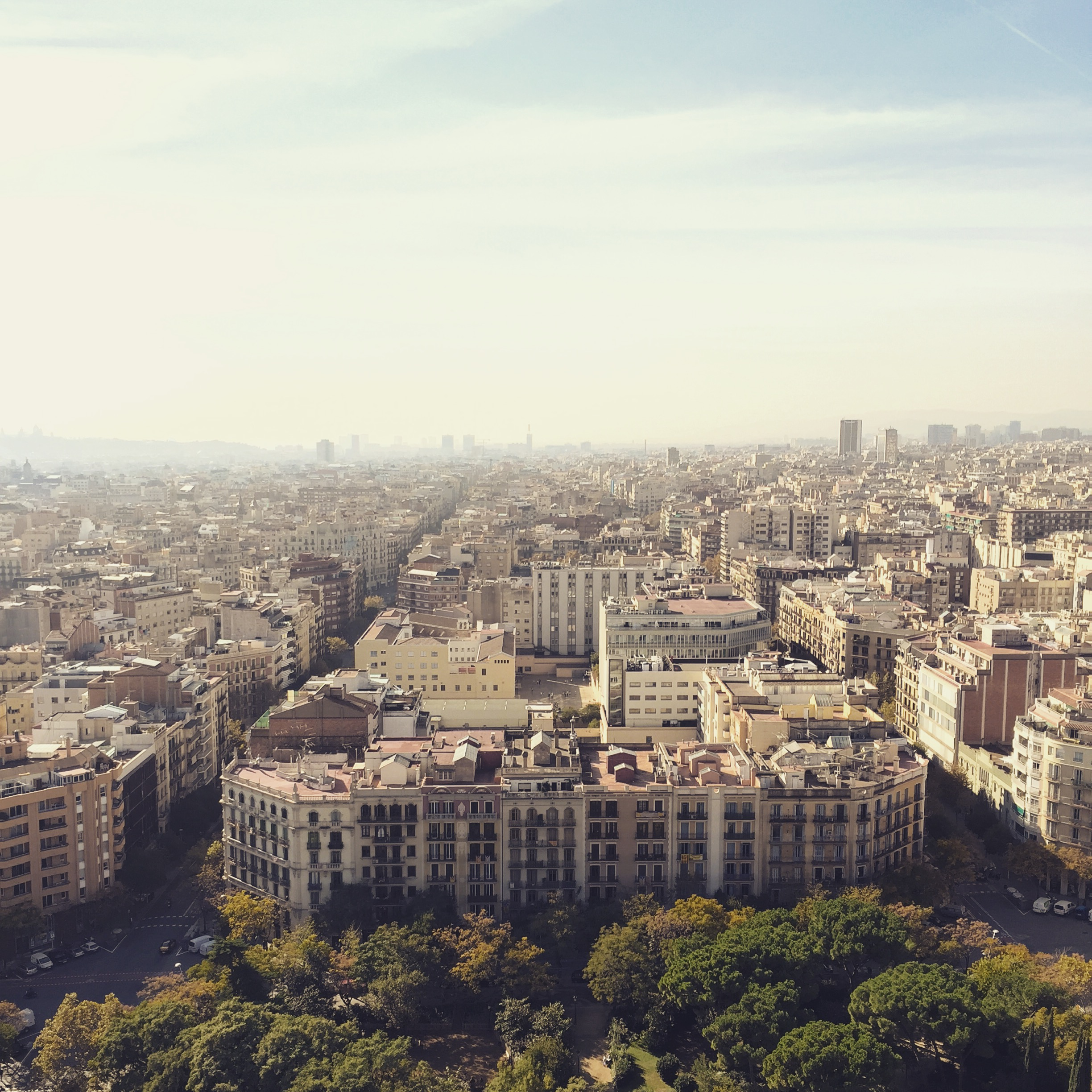 01_Barca birds eye